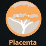 How to Install Placenta Kodi addon