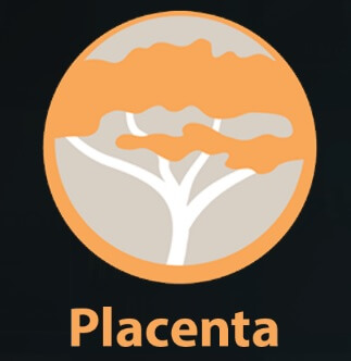 How to Install Placenta Kodi addon