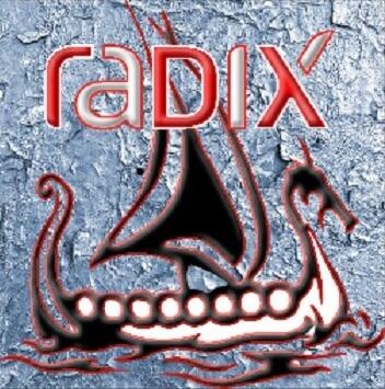 Install Radix Kodi addon